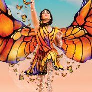 Cirque du Soleil. LUZIA. ВИП-Пакет