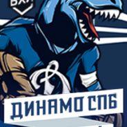 Динамо СПб - Хумо
