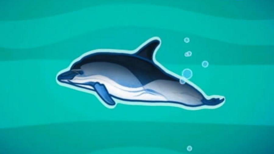 Выпуск 274 «Дельфины». Видео 2