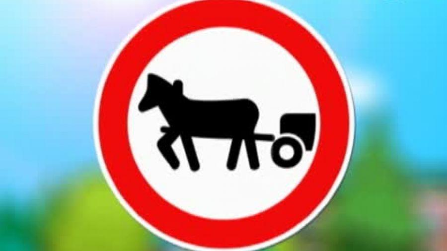 Знак «Движение гужевых повозок запрещено»