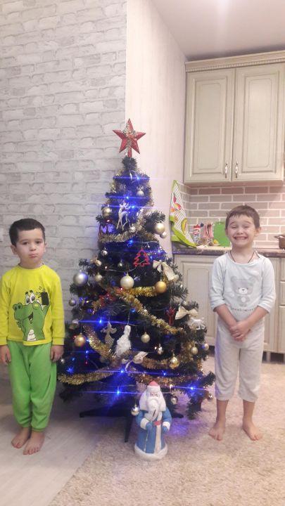Кирилл и Глеб Дмитриевичи Афиногеновы