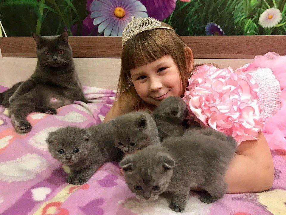 Алабина Арина Дмитриевна