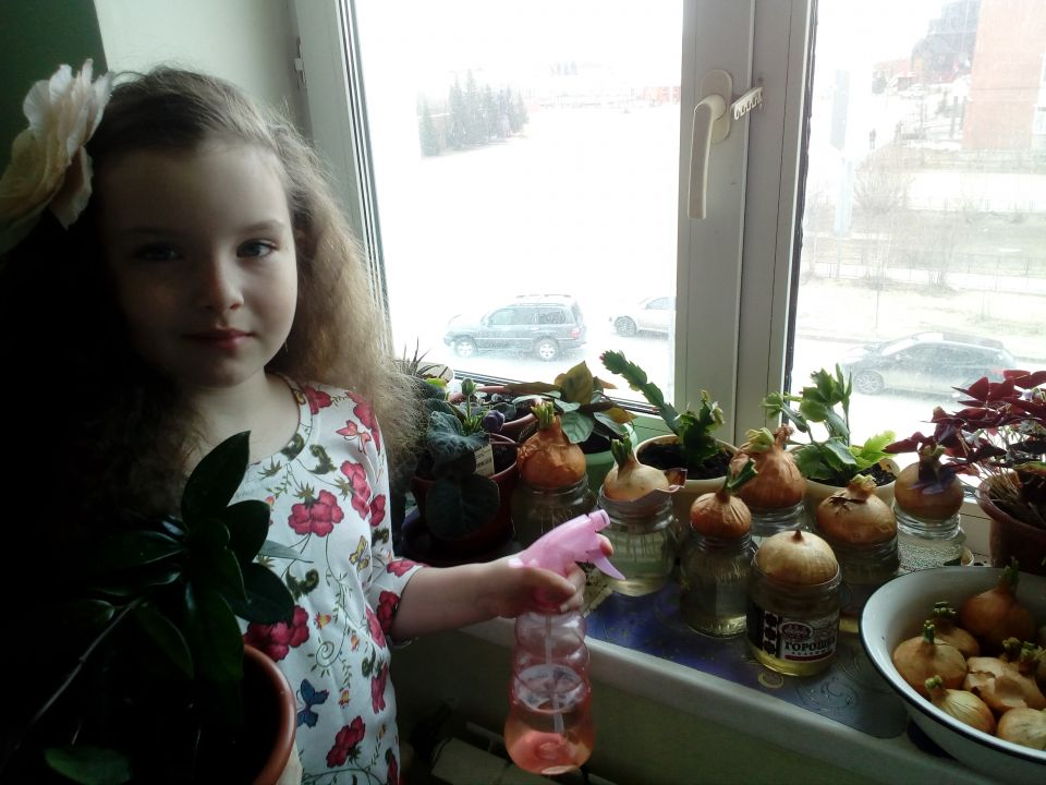 Ястребова Эльвира Михайловна