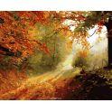 "Набор для раскрашивания по номерам Фрея ""Осенняя тропа"", 40 х 50 см"