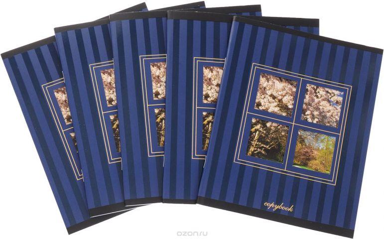 КТС-Про Набор тетрадей Вид из окна 48 листов в клетку цвет синий 5 шт