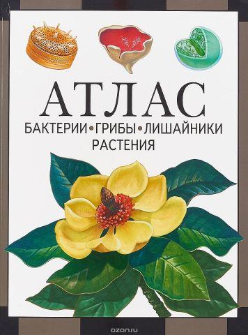 Атлас. Бактерии, грибы, лишайники, растения
