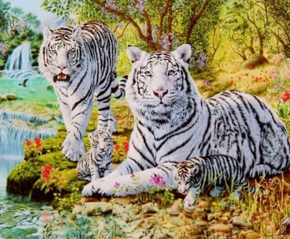 "Картина по номерам Школа талантов ""Белые тигры"", 2467706, 30 х 40 см"