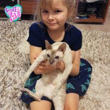 Софья Дмитриевна Антюхова